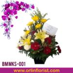 BM MKS-001