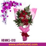 HB MKS-010