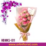 HB MKS-011