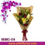 HB MKS-014