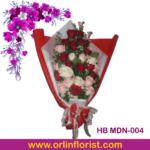 HB MDN-004