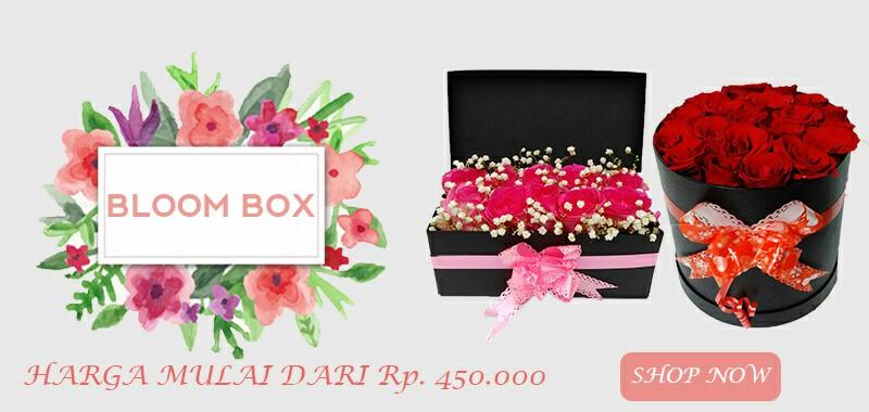 banner bloom box